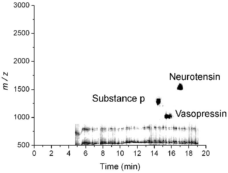 A two dimensional representation of a CE-MALDI separation of the peptides substance p, vasopressin and neurotensin. The gray scale intensity represents the ion signal at a particular m/z and elution time.