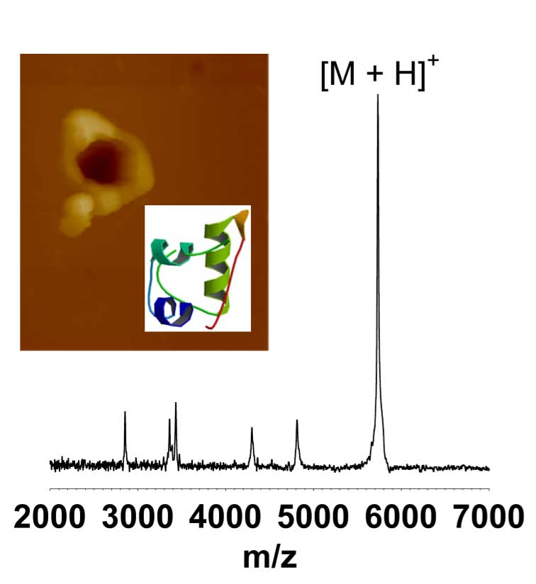 AFM image of ablation crater of an insulin thin film and MALDI mass spectrum of the collected material