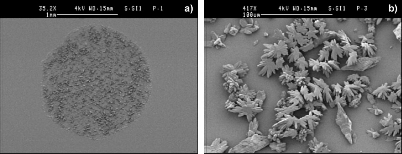 SEM images of MALDI sample spots on a silicon target (detail)