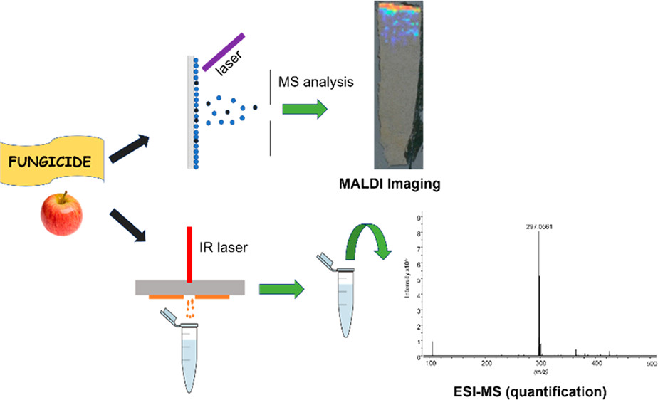 Matrix-Assisted Laser Desorption Ionization Imaging and Laser Ablation Sampling for Analysis of Fungicide Distribution in Apples